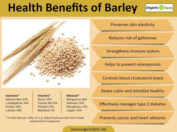 barleyinfographic.jpg