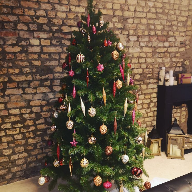 The Christmas Tree A Day In The Life Of A Latvian Mom